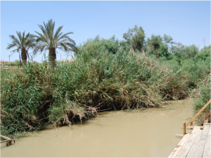 The Lower Jordan River, which forms the border between Israel and Palestine to the west and Jordan to the east, has shrunk dramatically over the last 50 years. On the right, the Jordanian bank, on the left the Israeli bank.