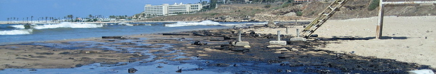 Lebanon-The beaches of Beirut were heavily polluted after Israel's bombing of the power plant at Jiyeh-Magnus Manske