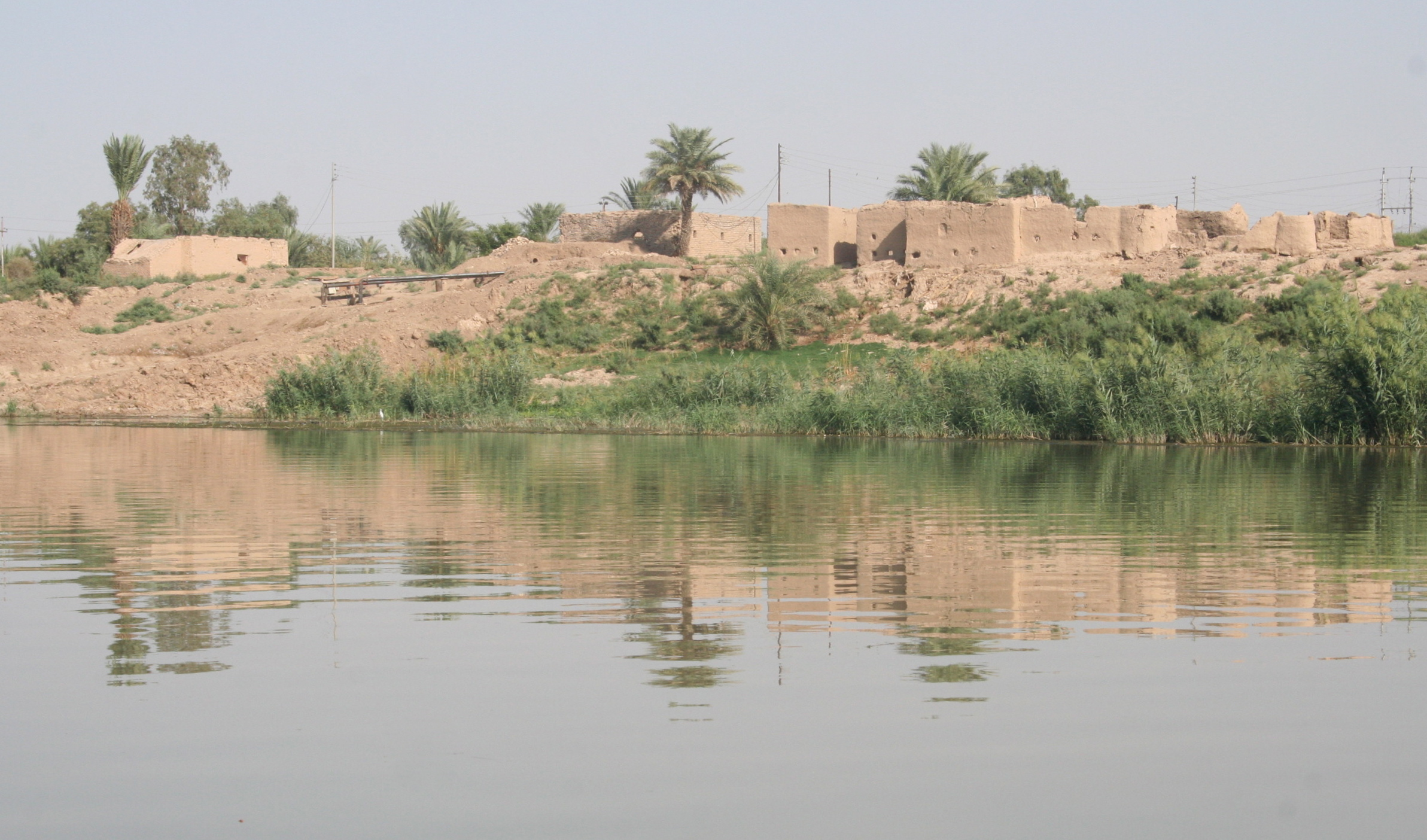 Iraq water river palm trees
