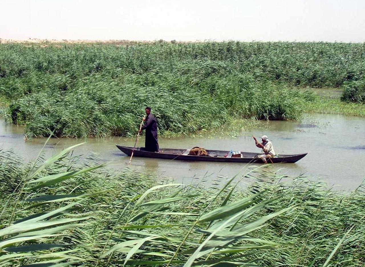 Marsh Arabs on the Tigris, Iraq