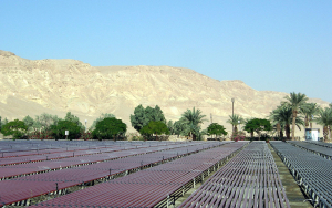 Algoculture at Kibbutz Ketura in the Negev Desert. Photo: Remi Jouan.