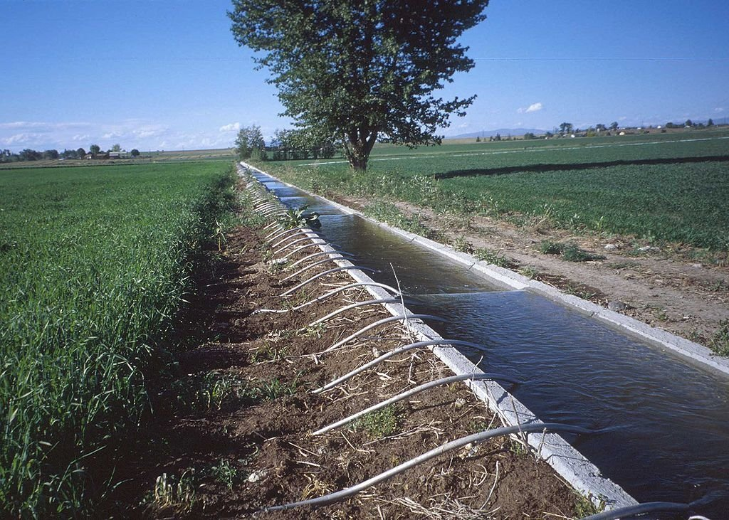 Israel aims to further increase the use of treated effluent in the agricultural sector. Photo: Dan Ogle.