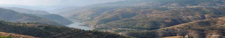 Landscape between Amman and Jerash Photo: Jim Greenhill.