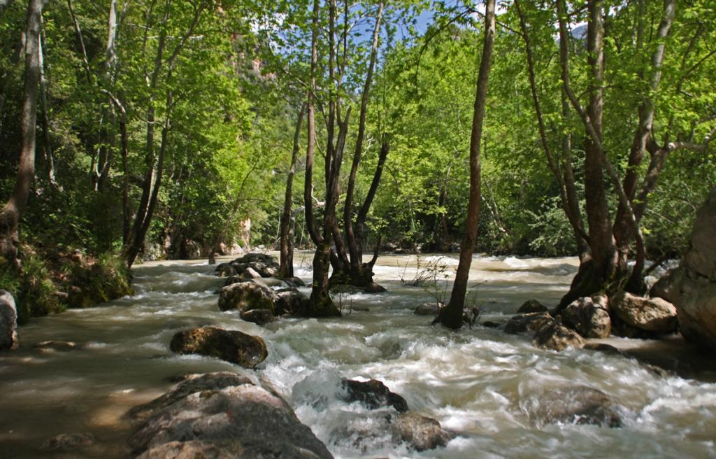 Nahr Ibrahim River, Lebanon. Photo: Rabih.