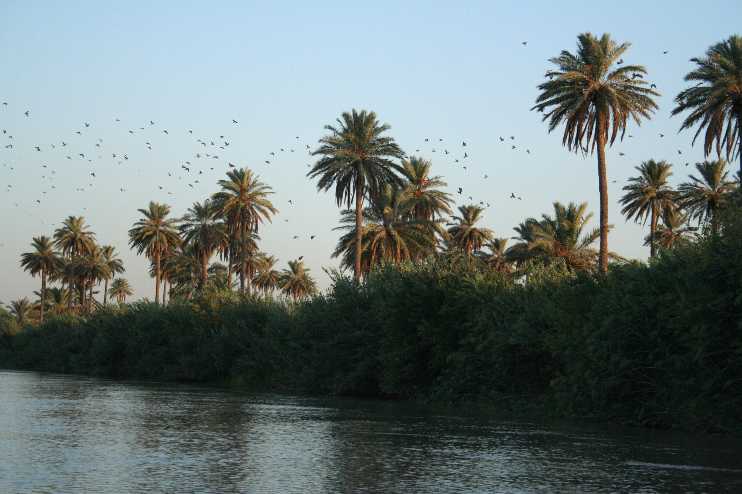 Water Resources in Iraq Fanack Water