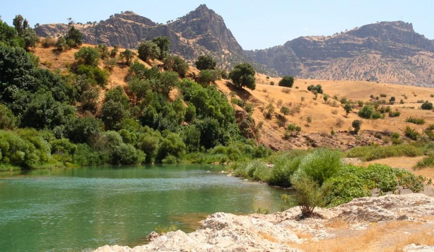 استهلاك المياه في العراق