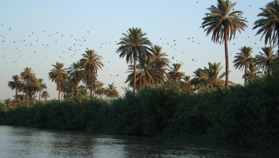 العراق المياه نهر دجلة الغروب