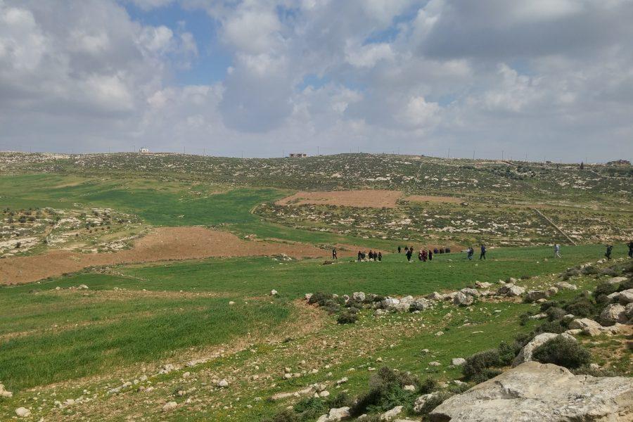 The first planting site, Wad Ben Saleh, al-Dahriya.