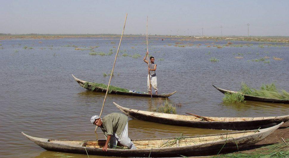 الأهوار أهوار العراق