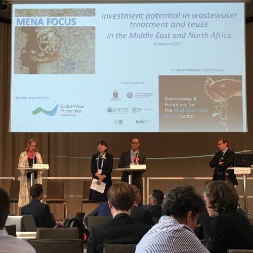 الاستثمارات في معالجة المياه العادمة: دور القطاع الخاص والمنظمات الدولية في دول منطقة الشرق الأوسط وشمال أفريقيا