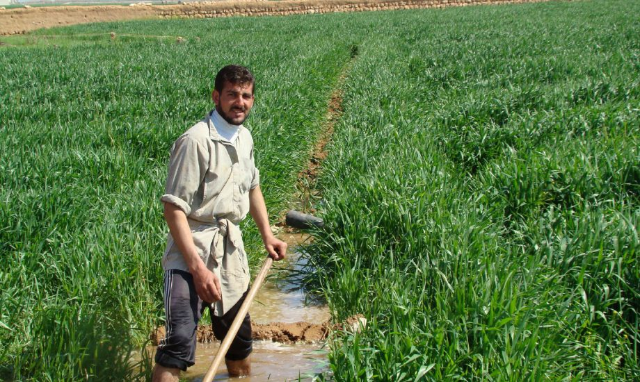 استهلاك المياه في سوريا water use in Syria