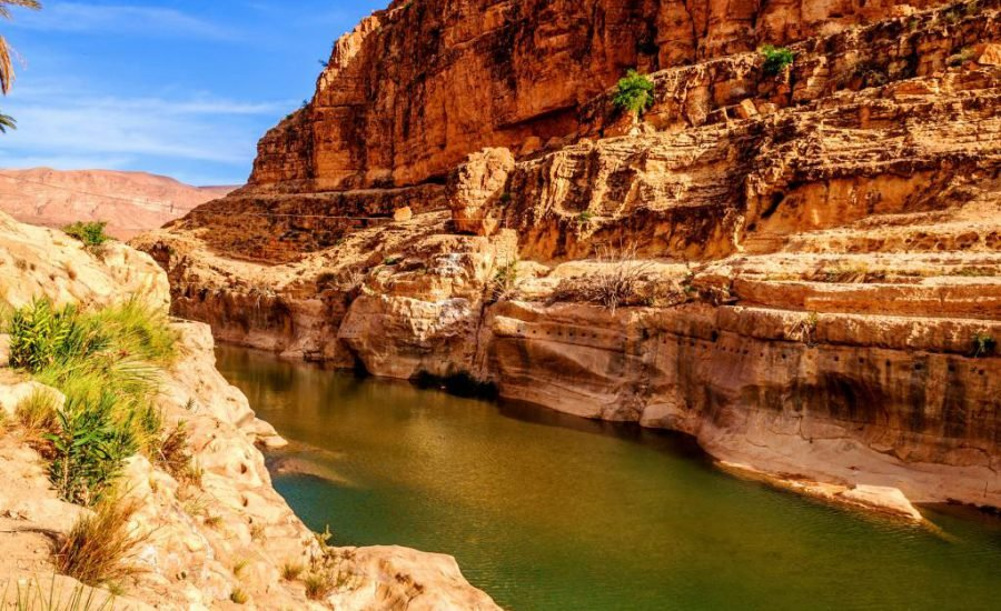 Oasis in Biskra Shared Water Resources in Algeria