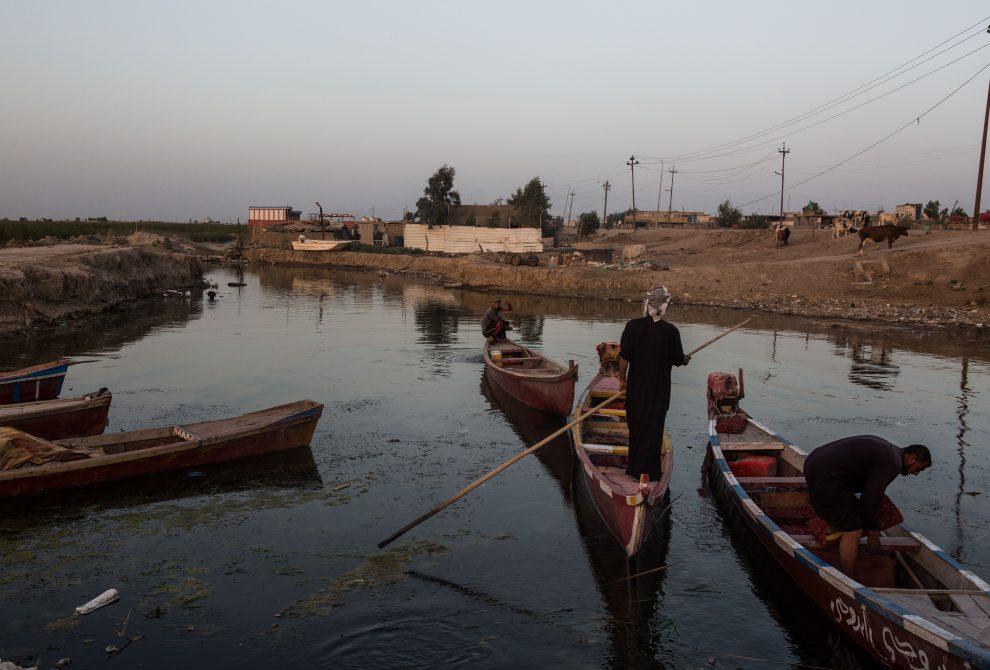 صورة 1: مستنقع شبيش ، العراق. إن تغير المناخ يهدد الاستقرار الهش للعراق ، ويمكنه القضاء على ما تبقى من الثقافة والأهوار السومرية. (المصور: أريانا باجاني)