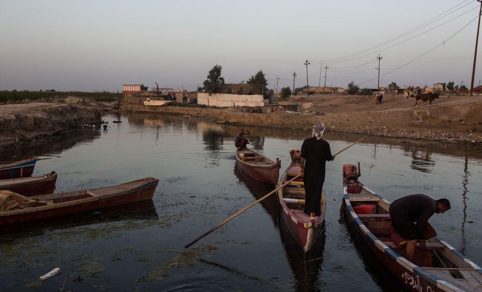 Marshes Chibayish Iraqi Activists