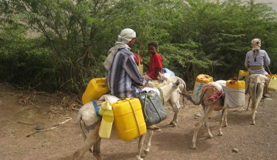 Fetching water in yemen
