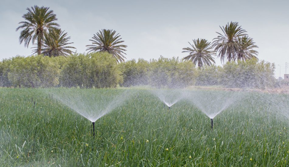 استهلاك المياه في تونس - Fanack المياه