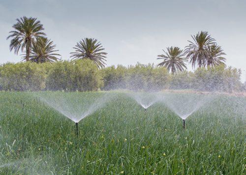 Water Use in Tunisia