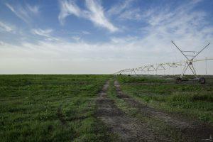 استهلاك المياه في قطر