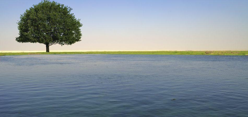 مزرعة إركية - تحديات المياه في قطر
